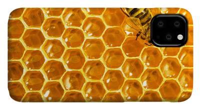 Beekeeper iPhone Cases
