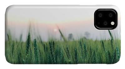 Beautiful Sunset iPhone Cases
