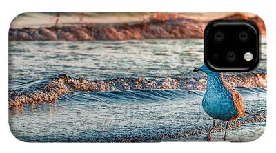 Scenic Photographs iPhone 11 Pro Cases