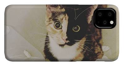 Cat iPhone 11 Pro Max Cases