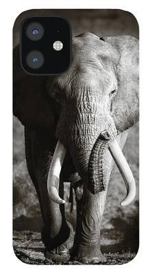 Bull iPhone Cases