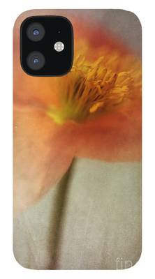 Dreamy iPhone 12 Cases