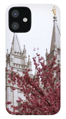 Temples iPhone 12 Cases
