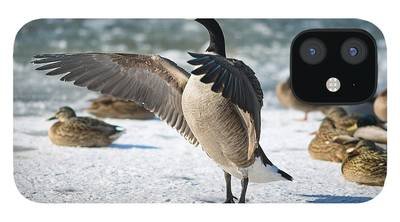 Canada Goose iPhone Cases