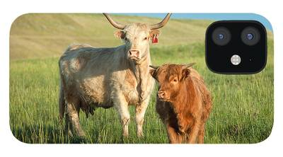 Cattle iPhone 12 Cases