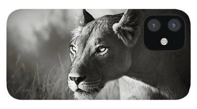Feline iPhone Cases