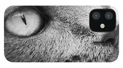 Bentley iPhone 12 Cases