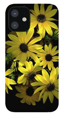 Black Eyed Susans iPhone Cases