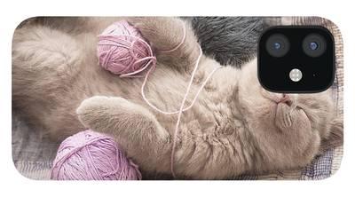 British Shorthair iPhone 12 Cases
