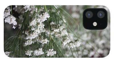Queen Annes Lace iPhone Cases