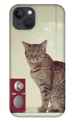 Ocicat iPhone Cases