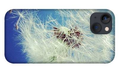 Spring iPhone Cases