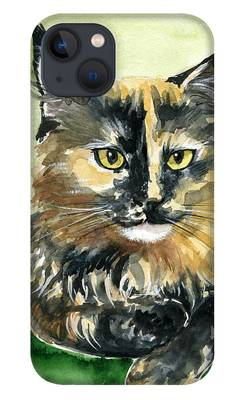 Main Coon iPhone Cases