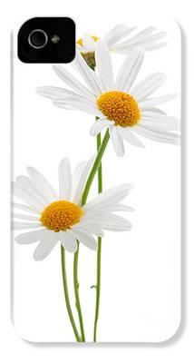 Daisies iPhone 4 Cases