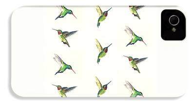 Hummingbird iPhone 4 Cases