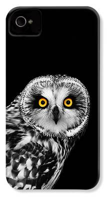 Falcon iPhone 4 Cases