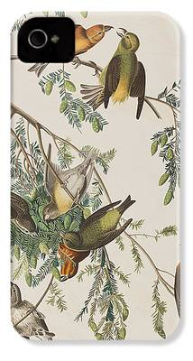 Crossbill iPhone 4 Cases