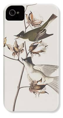 Flycatcher iPhone 4 Cases