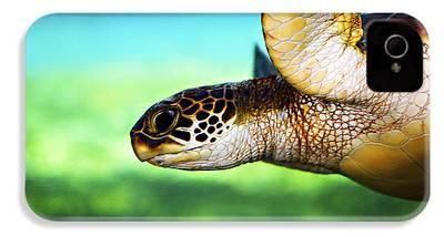 Turtle iPhone 4 Cases