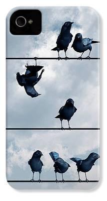Blackbird iPhone 4 Cases