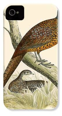 Pheasant iPhone 4s Cases