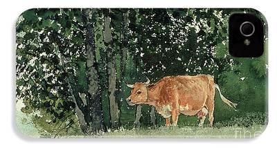 Cow iPhone 4s Cases
