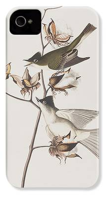 Flycatcher iPhone 4s Cases