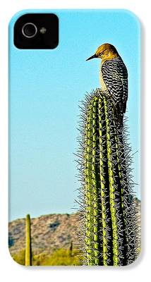 Woodpecker iPhone 4s Cases