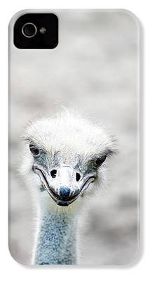 Ostrich iPhone 4s Cases