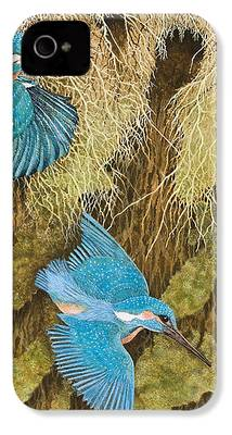 Kingfisher iPhone 4s Cases