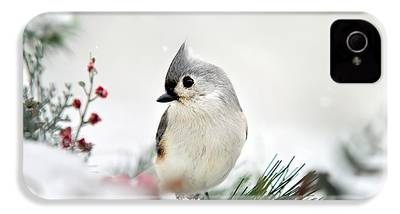 Titmouse iPhone 4s Cases