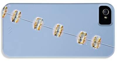 Diatom iPhone 5 Cases