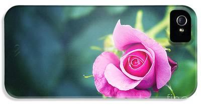 Raspberry iPhone 5 Cases