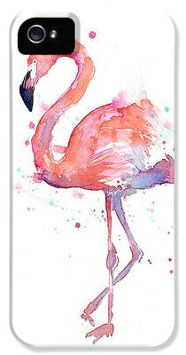 Animals iPhone 5 Cases