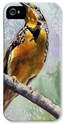 Meadowlark IPhone 5 Cases