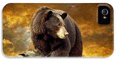 Brown Bear IPhone 5 Cases
