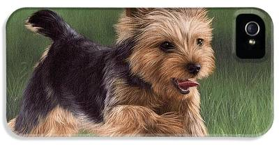 Yorkshire Terrier IPhone 5 Cases