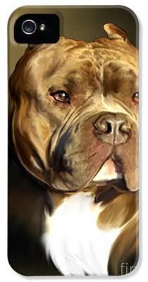 Pitbull IPhone 5 Cases