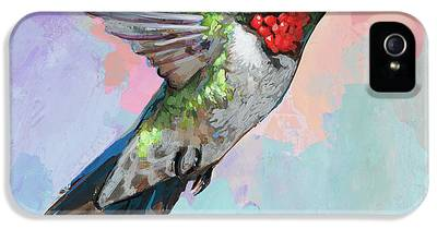 Hummingbird IPhone 5 Cases