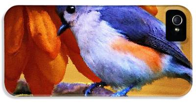 Titmouse IPhone 5 Cases