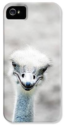 Ostrich iPhone 5 Cases