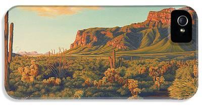 Desert Sunset IPhone 5 Cases