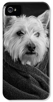 Dog iPhone 5 Cases