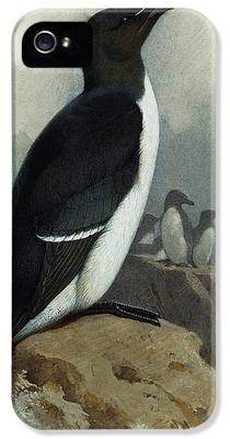 Razorbill iPhone 5 Cases