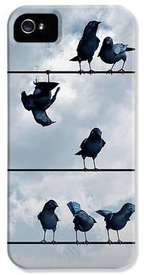 Blackbird iPhone 5 Cases
