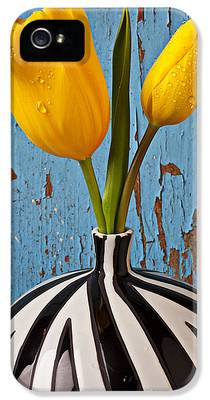 Tulips iPhone 5 Cases