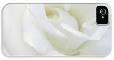 Ivory Roses iPhone 5 Cases