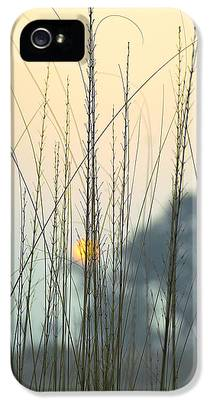 Grass iPhone 5 Cases