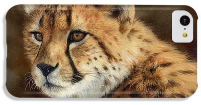 Cheetah IPhone 5c Cases