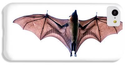 Bat IPhone 5c Cases